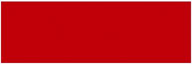 savoryoursenses-logo